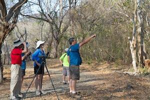 Birding near La Ensenada Lodge, Costa Rica, photo by Debbie Thompson