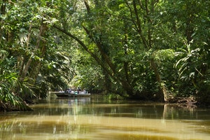 Boating Tortuguero National Park in Costa Rica photo by Debbie Thompson